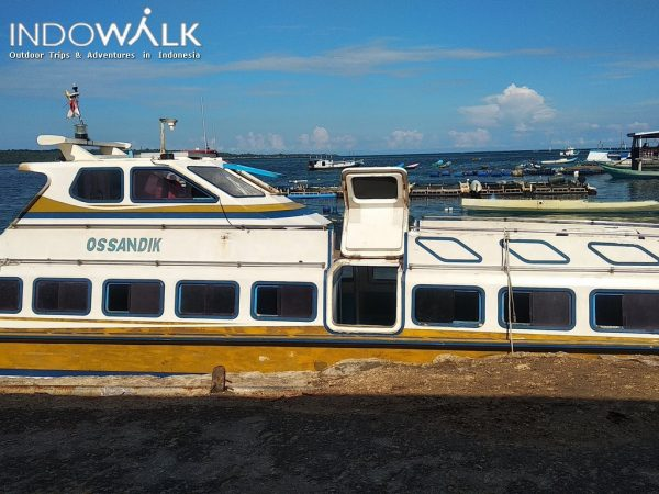 Paket Wisata Explore Wakatobi 3 Hari 2 Malam Wangi - Wangi Kaledupa